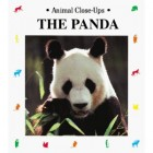 Book Review – The Panda: Wild About Bamboo