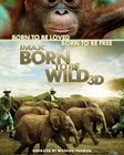 Amazing Movie Review – Born to Be Wild