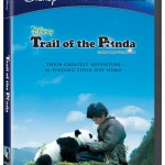 Amazing Movie Review: Trail of the Panda