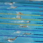 The Spectacular Swimming Race