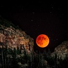 The Large Blood Moon