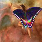 The Fairy Dream